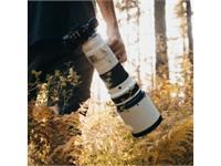 Olympus lens M.Zuiko Digital ED 150-400mm F4.5 TC1.25x IS PRO