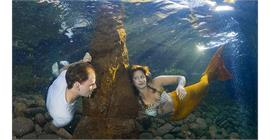 Underwater photography training