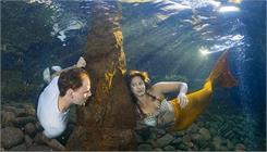 Cours photo sous-marine (en allemand)