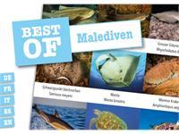 Dive-Sticker (8 Bogen mit total 96 Selbstklebe-Bildern inkl. ID in deutsch/lateinisch) - Malediven
