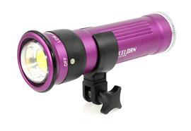 LOCAZIONE: Keldan compact video light Video 8X FLUX (senza filtr
